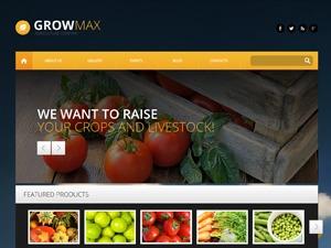 theme46545 WordPress theme