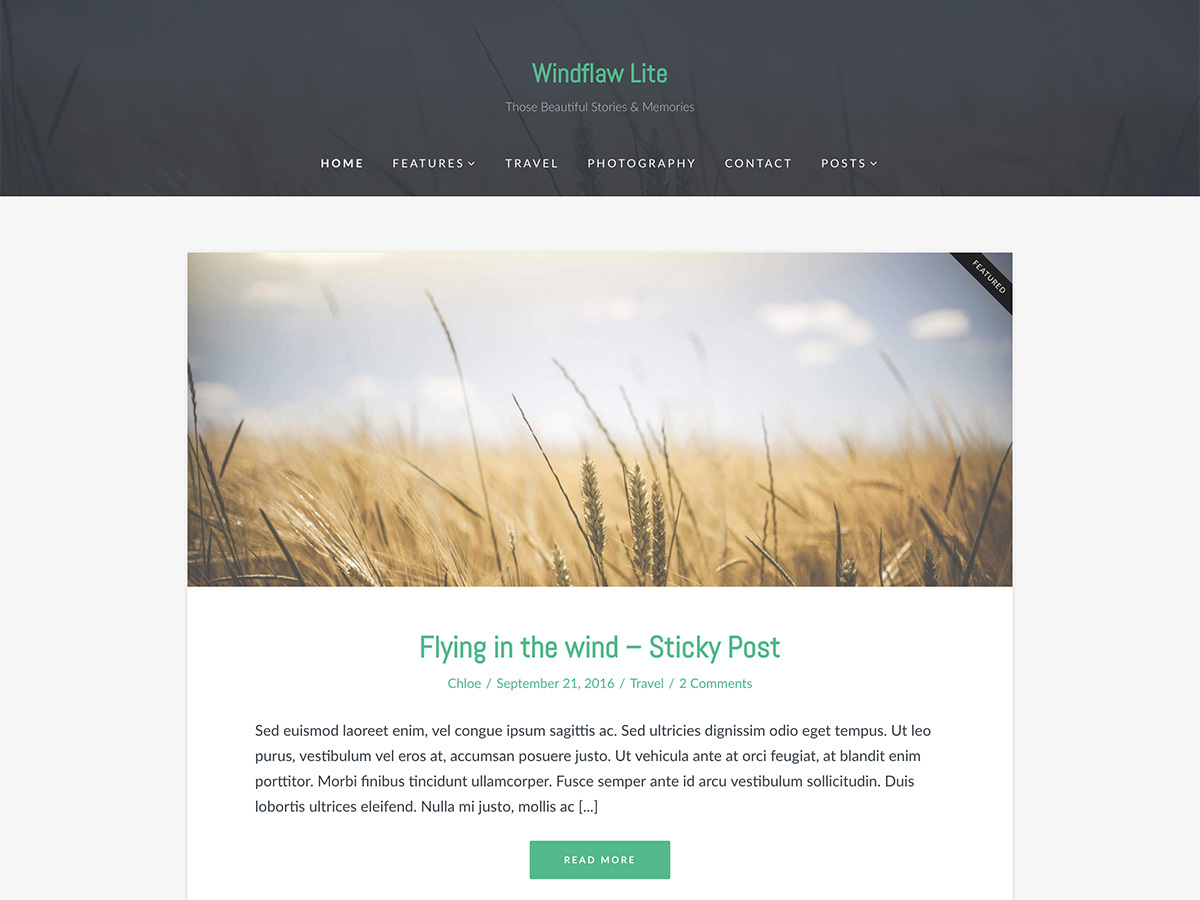 Windflaw Lite free WordPress theme
