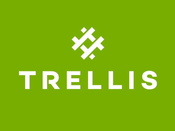 WordPress template Trellis Foundation