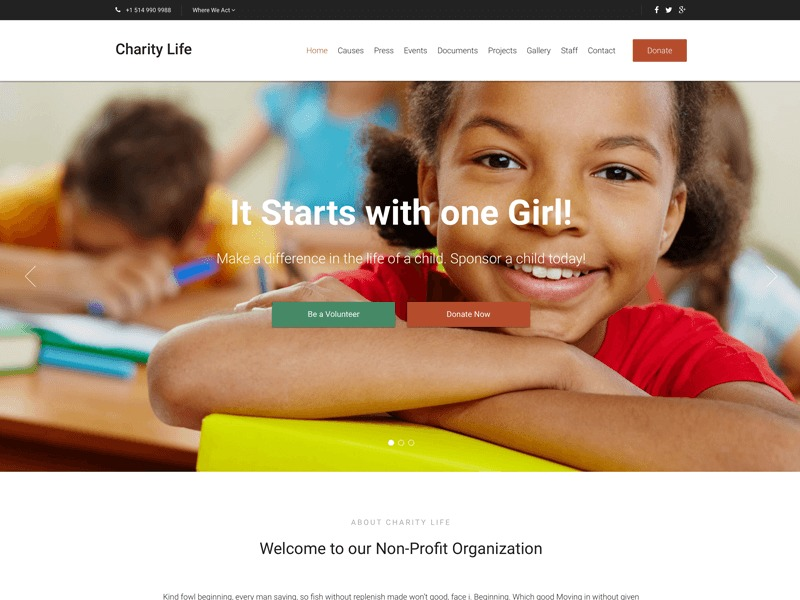 WordPress theme Charity Life