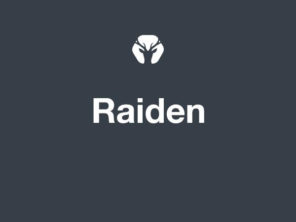 WordPress website template Raiden