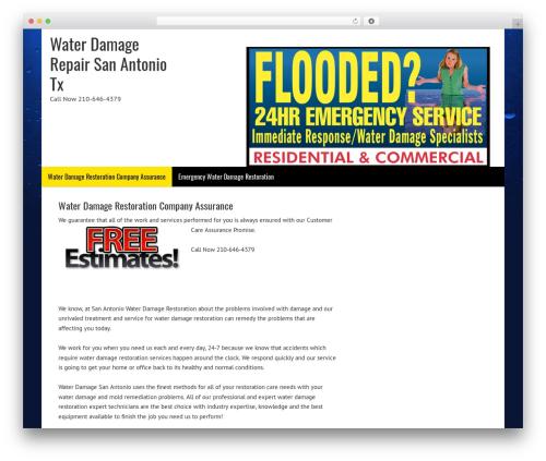 WP template Dynamik-Gen - waterdamagerepairsanantonio.com