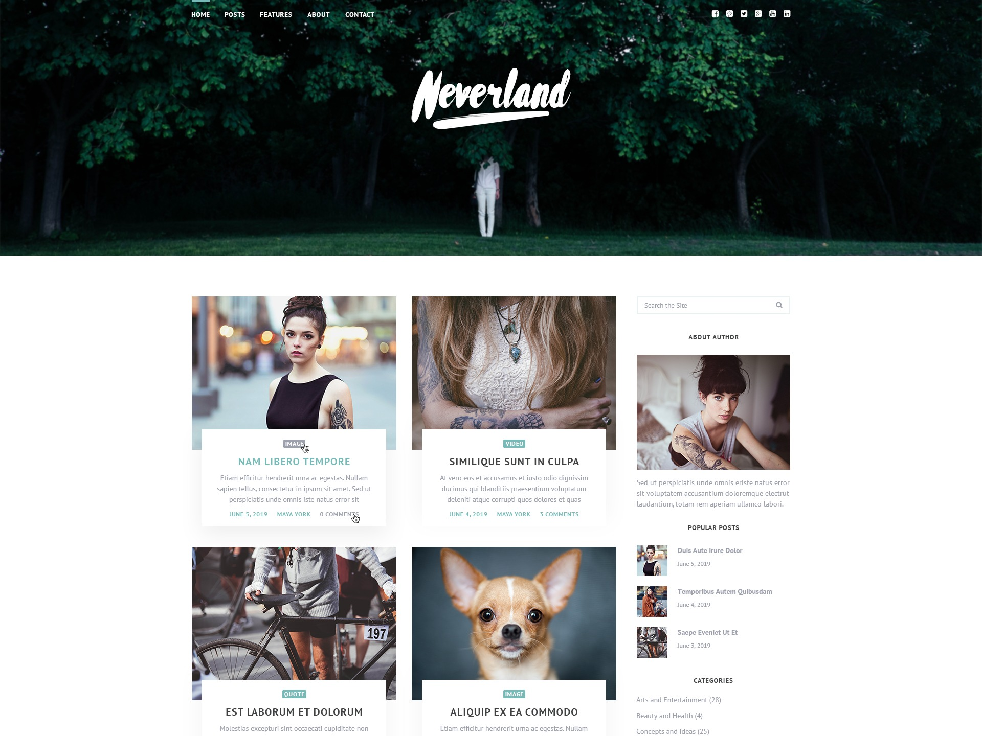 WP theme Neverland