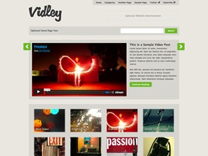 WP theme Vidley
