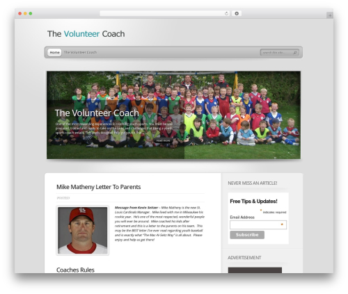 Best WordPress theme TheProfessional - thevolunteercoach.com