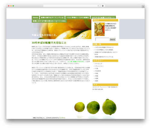 Citrus Mix WP template - topseoconsultingfirm.info