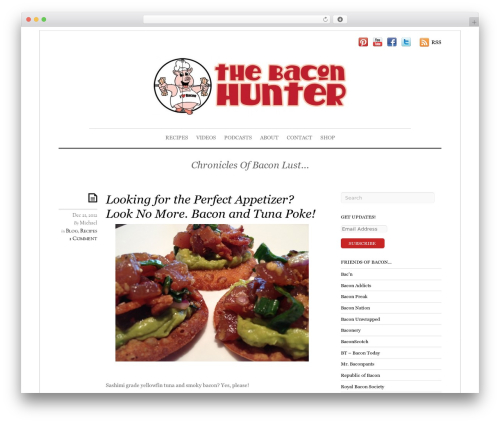 Elemin WordPress theme - thebaconhunter.com