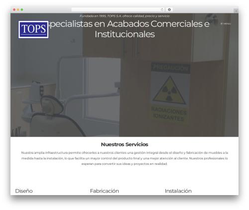 Form WordPress website template - topsenlinea.com