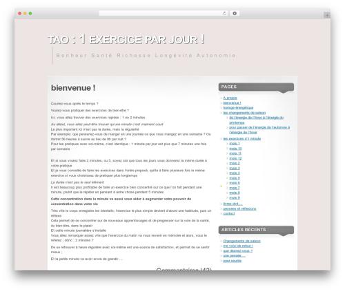 Mystique best WordPress theme - tao-1exercice-par-jour.com