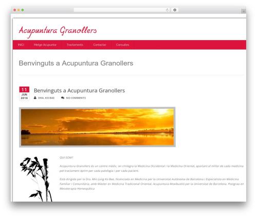 Health-Center-Lite WordPress theme download - acupunturagranollers.com