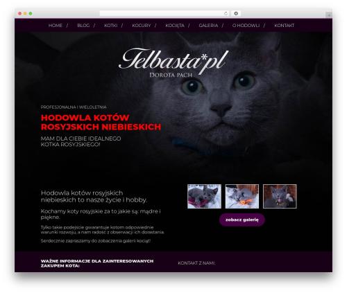 BLANK Theme WordPress website template - telbasta.pl