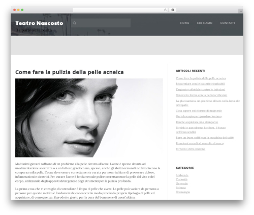 Daily Stories WordPress theme - teatrodinascosto.it
