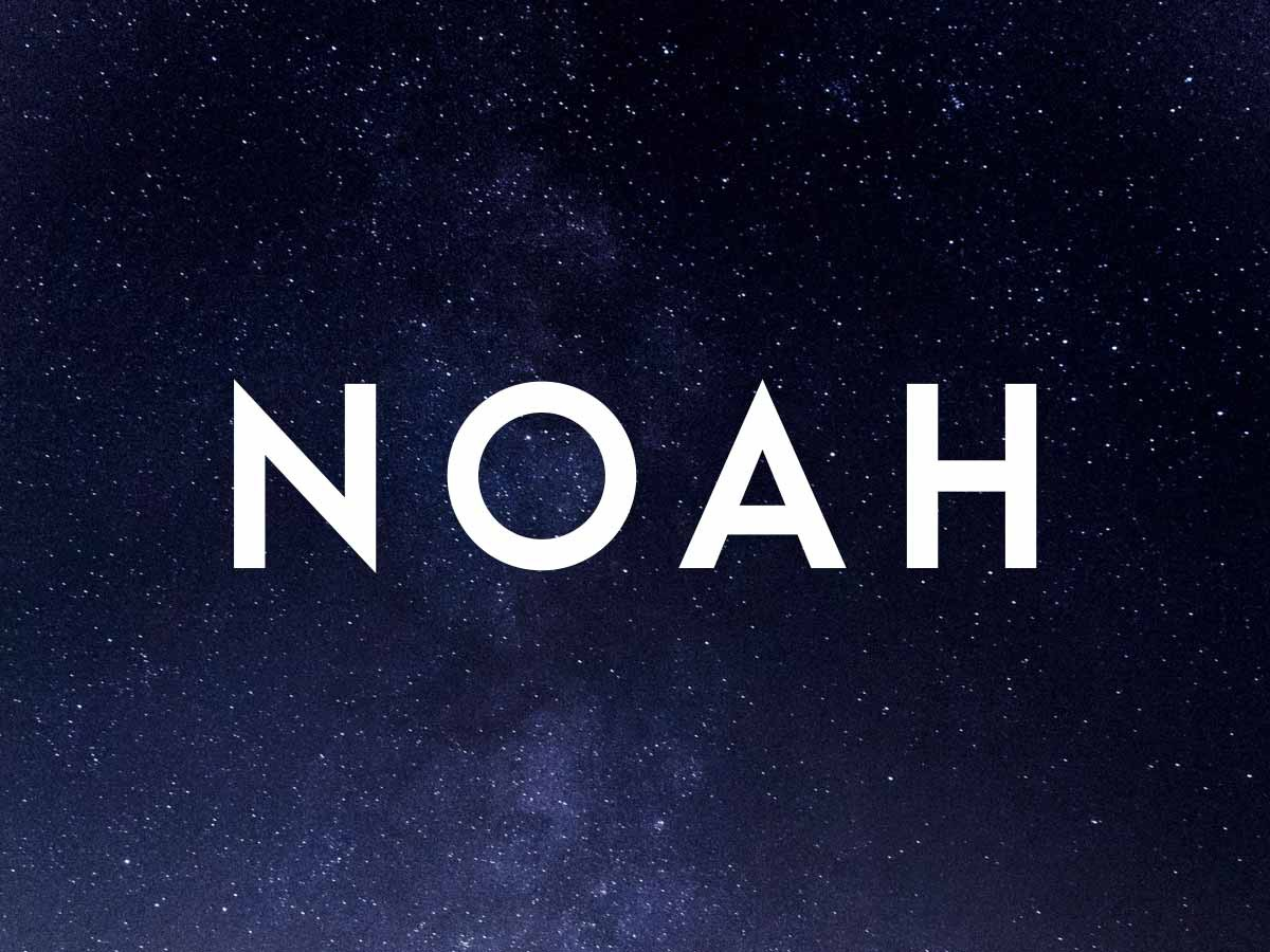 NOAH WordPress page template