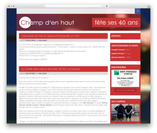 Roots Starter Theme premium WordPress theme - ttchampdenhaut.be