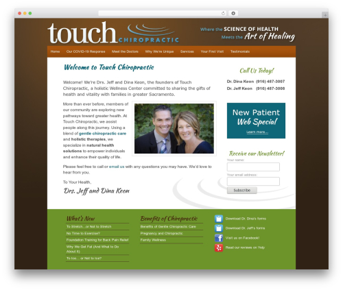 WordPress theme Ashford - touchchiro.com