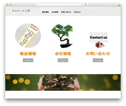 Best WordPress theme AGENT - kiyonaru.com