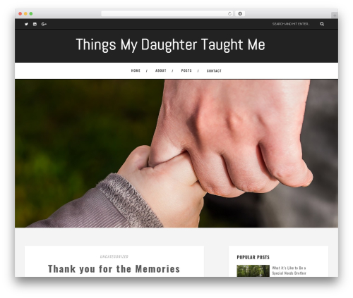 Amory WordPress theme - thingsmydaughtertaughtme.com