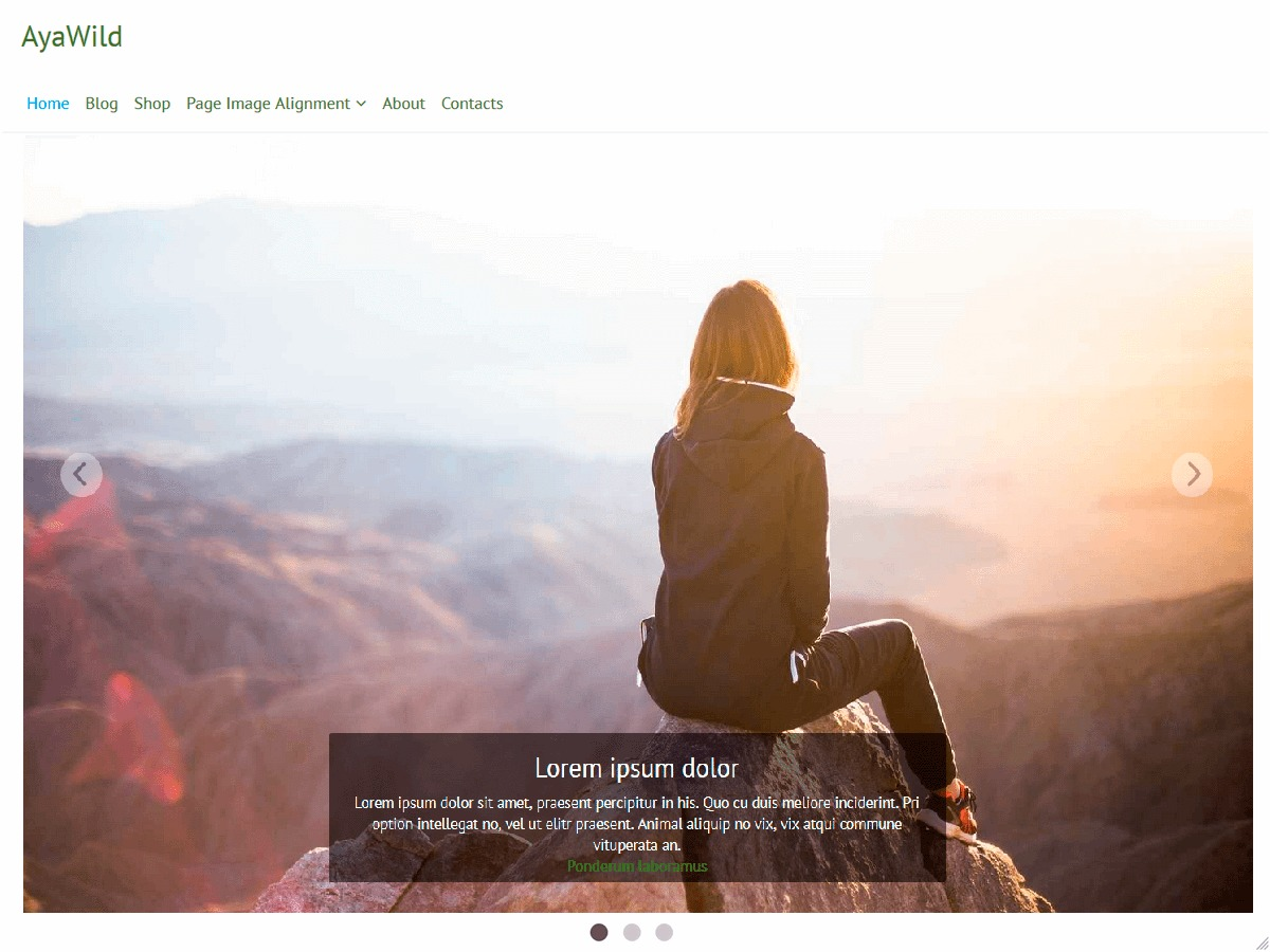 Best WordPress theme AyaWild
