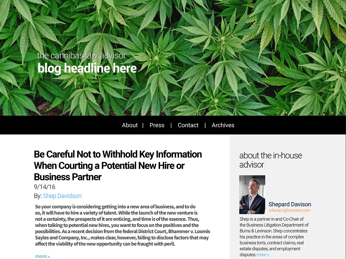 Cannibas Law Advisor best WordPress theme