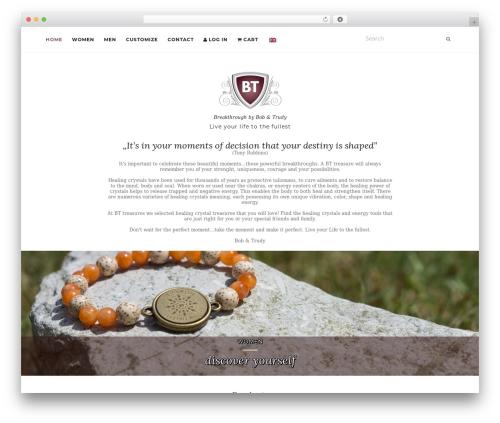 Activello WordPress theme - bt-treasures.com
