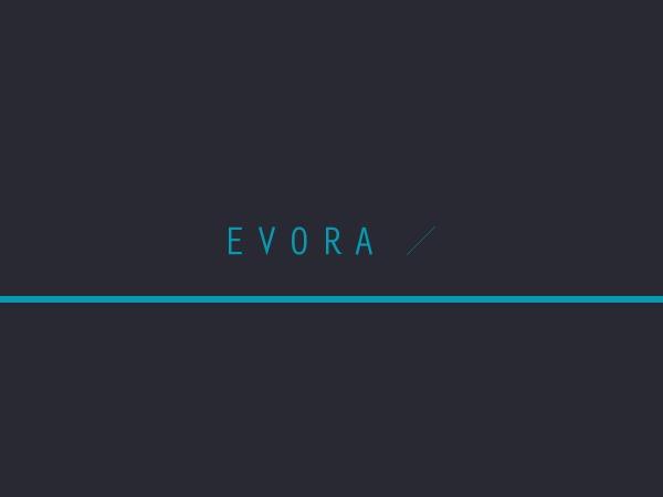 Evora WordPress ecommerce theme