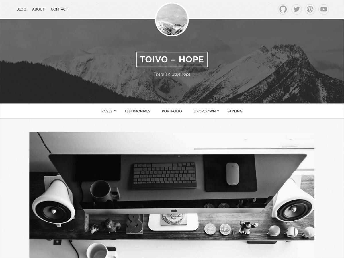 Toivo Lite Child best WordPress template