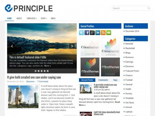 WordPress template Principle