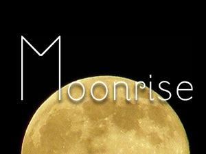 WordPress theme Moonrise Child