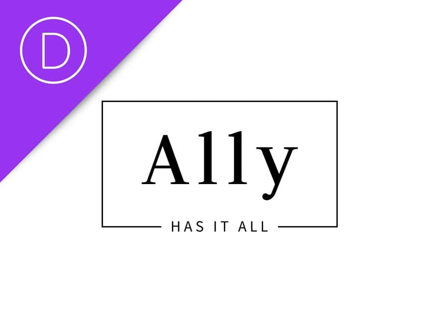 WP theme Ally Child Theme