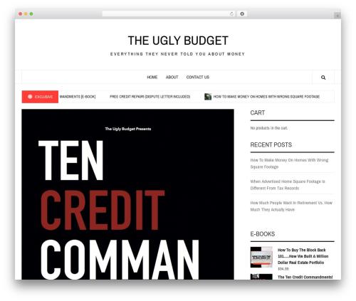 Best WordPress template Elegant Magazine - uglybudget.com