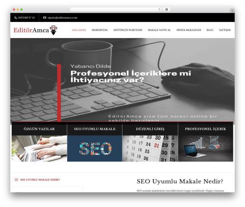 Veda WordPress website template - editoramca.com