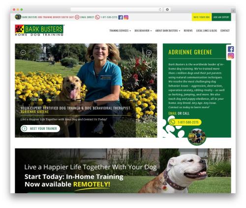 bigdogbroadcast2 template WordPress - dogtrainingdenversoutheast.com
