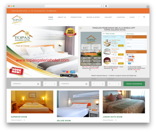 WordPress website template Hotel Master - topasgaleriahotel.com