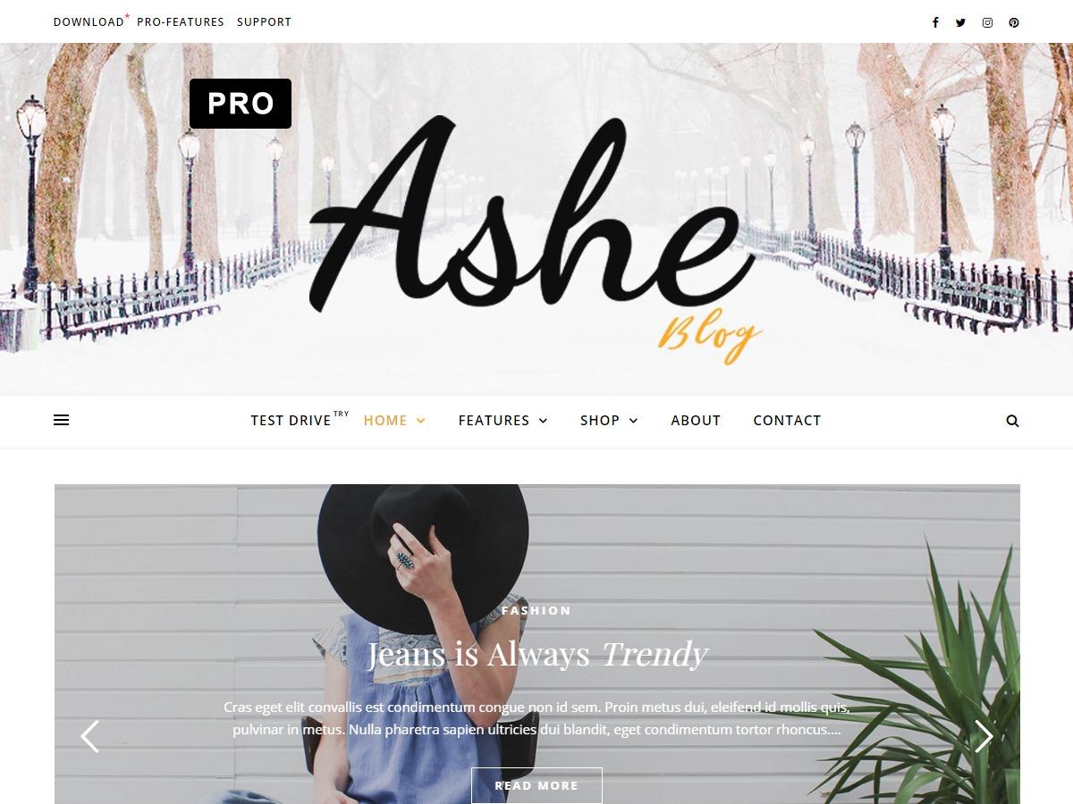 Best WordPress theme Ashe Pro (Premium)