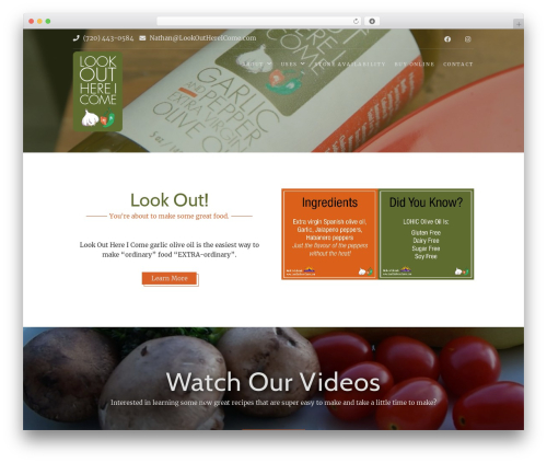 WordPress website template Food Express - lookouthereicome.com