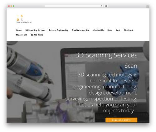 Ascension WordPress template - true3dsolutions.com