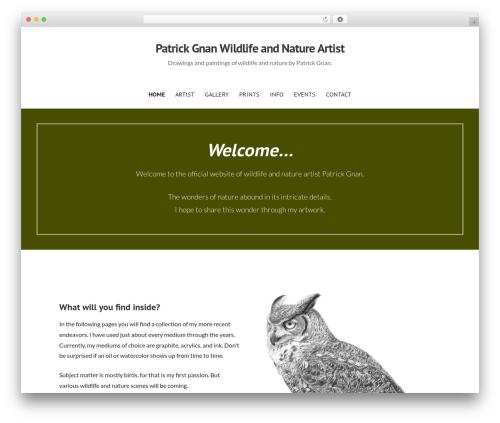 Primer free WP theme - patrickgnan.com