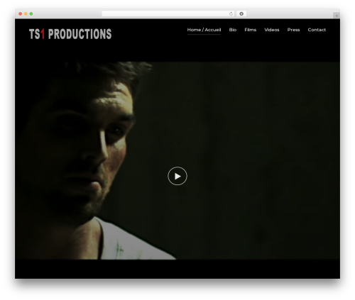Inspiro top WordPress theme - ts1productions.com