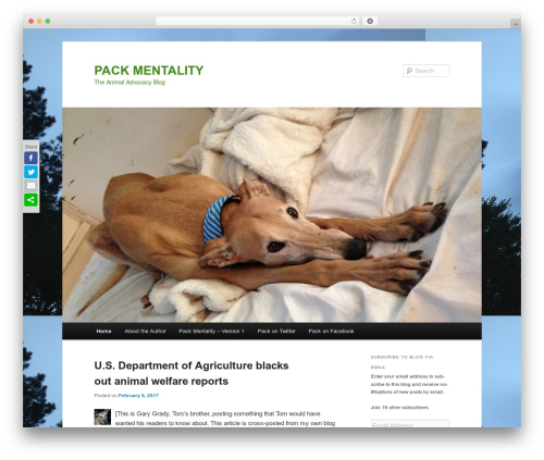 WordPress author-info-widget plugin - tomgradyonline.com