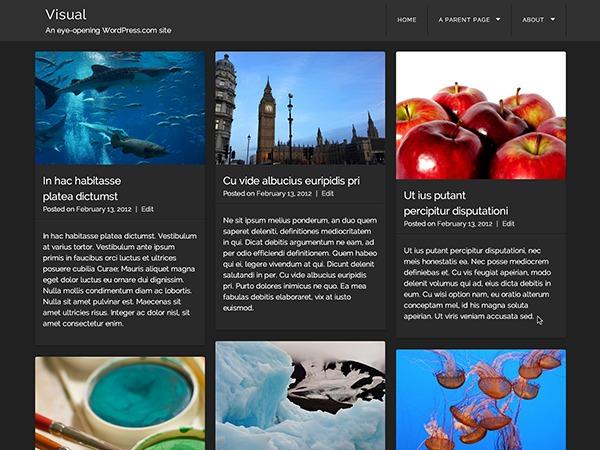 Visual – WordPress.com theme WordPress portfolio