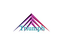 WordPress template Triumph Supplies & Services Nigeria Limited