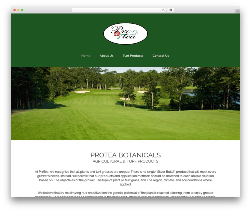 WordPress theme Stockholm - proteaturf.com