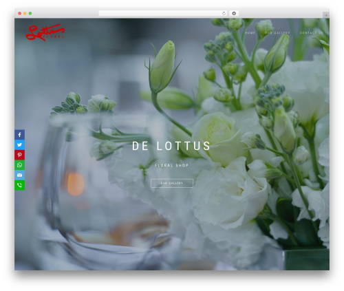ShopIsle PRO best WordPress theme - delottus.com