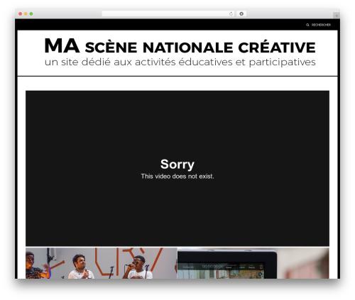 Riba Pro best WordPress template - mascenenationale-creative.com