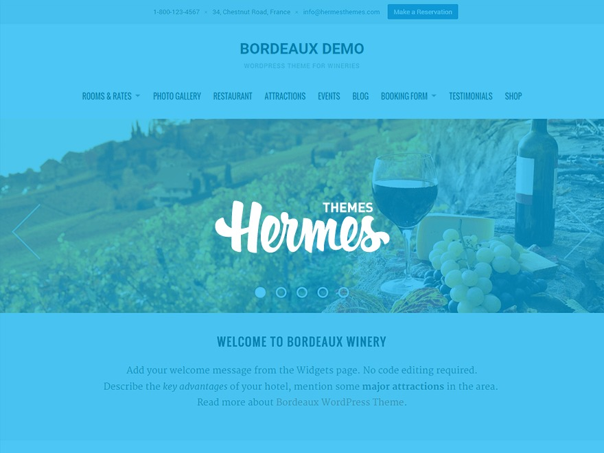 Bordeaux best hotel WordPress theme