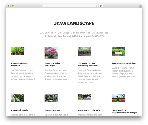Businessx WordPress template for business - javalandscape.com
