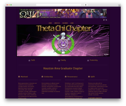 Current free WordPress theme - thetachiques.com