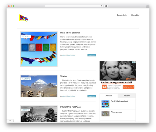 Free WordPress WP Tab Widget plugin - tibetas.lt