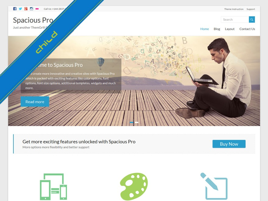 Spacious Pro Child Theme WordPress theme