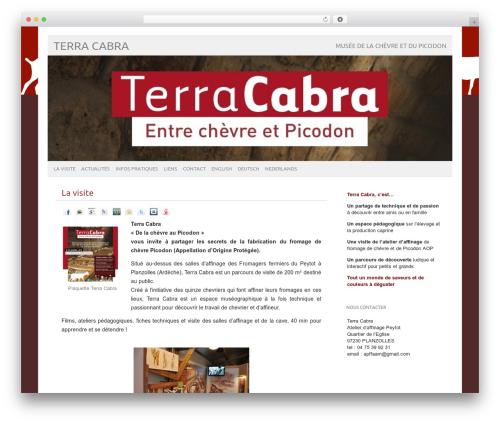 Theme WordPress picolight - terracabra.com